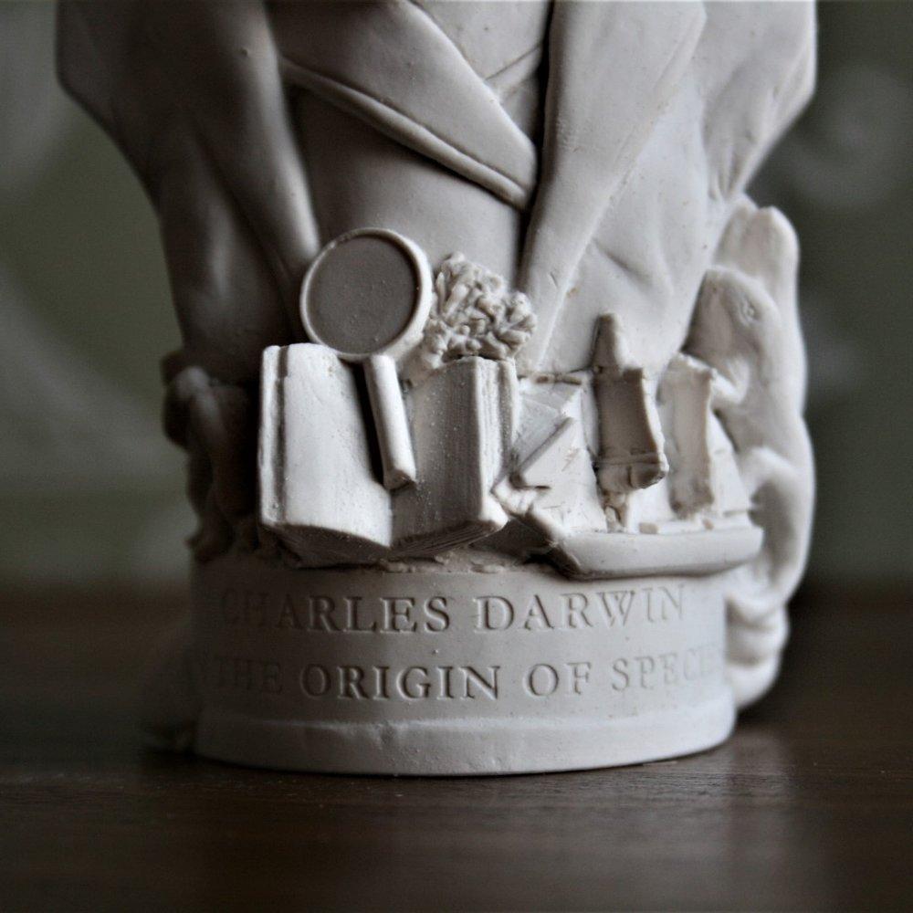 Darwin (3) (Large).JPG