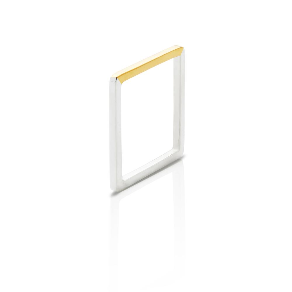 SN_ConfidentExpansion_Gold_O2.jpg