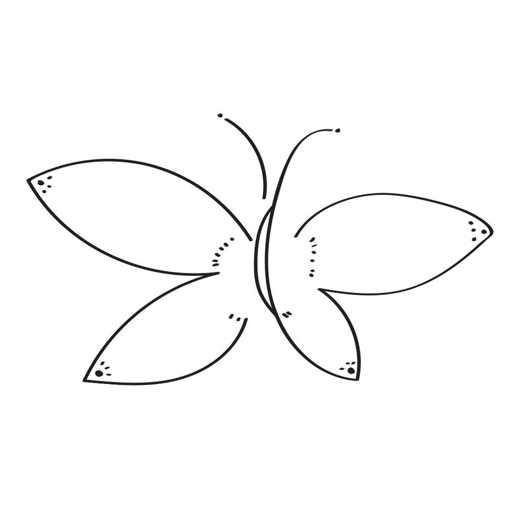 SN_Butterfly.jpg