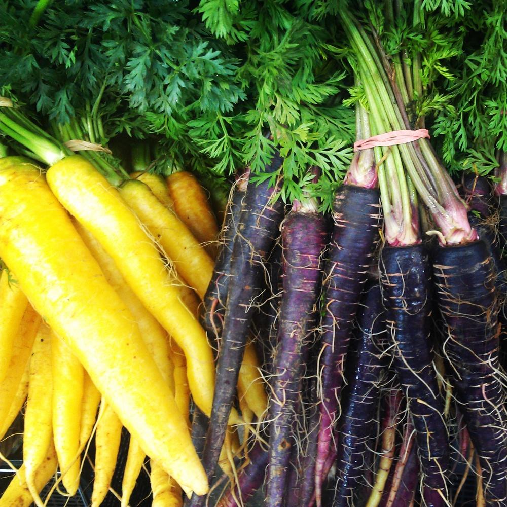 Eveleigh Market carrots
