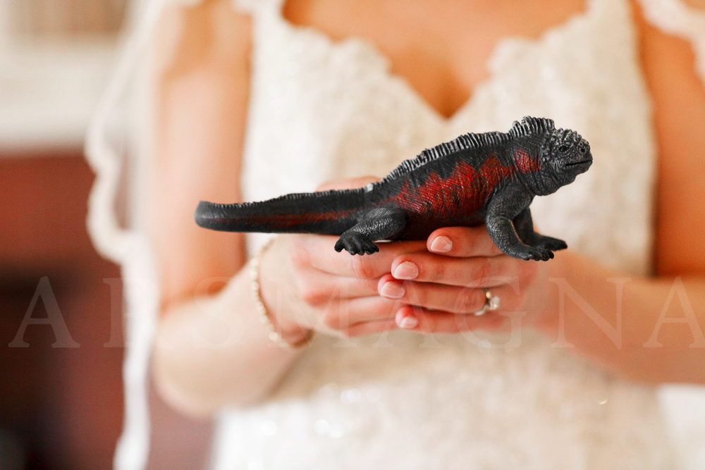 endicott-estate-boston-wedding-photography--7.jpg