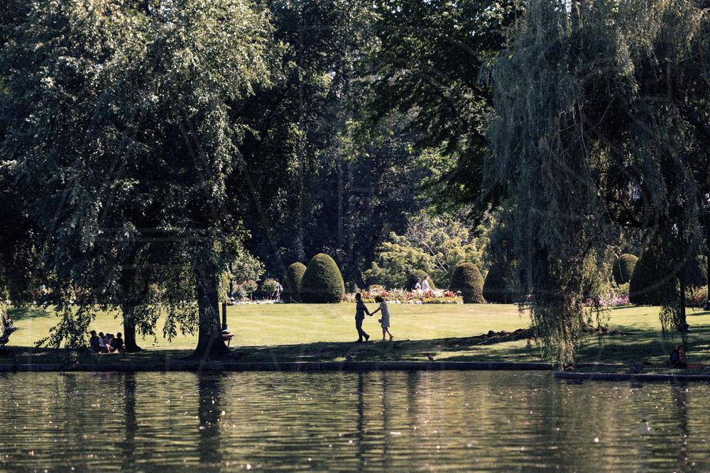 reflections pond Boston Public Garden wedding