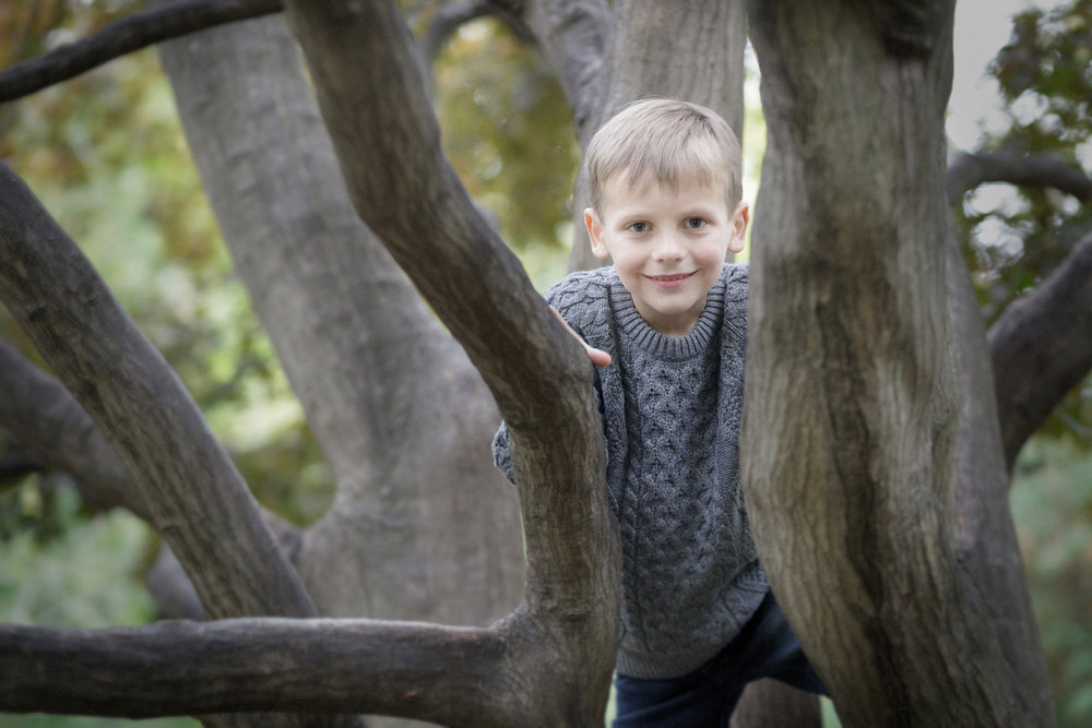 boy in tree outdoor portrait photography families Boston
