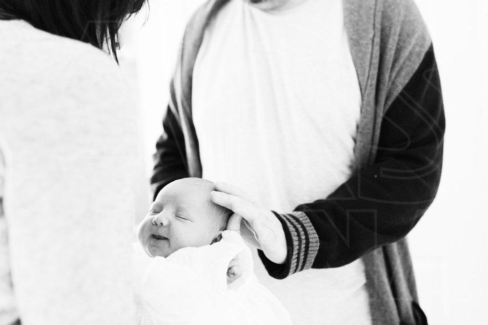 newborn family photography south boston