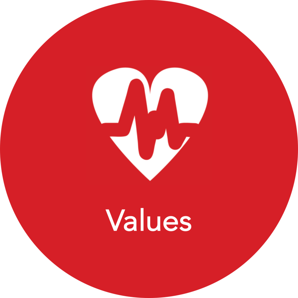 GuideIT Values