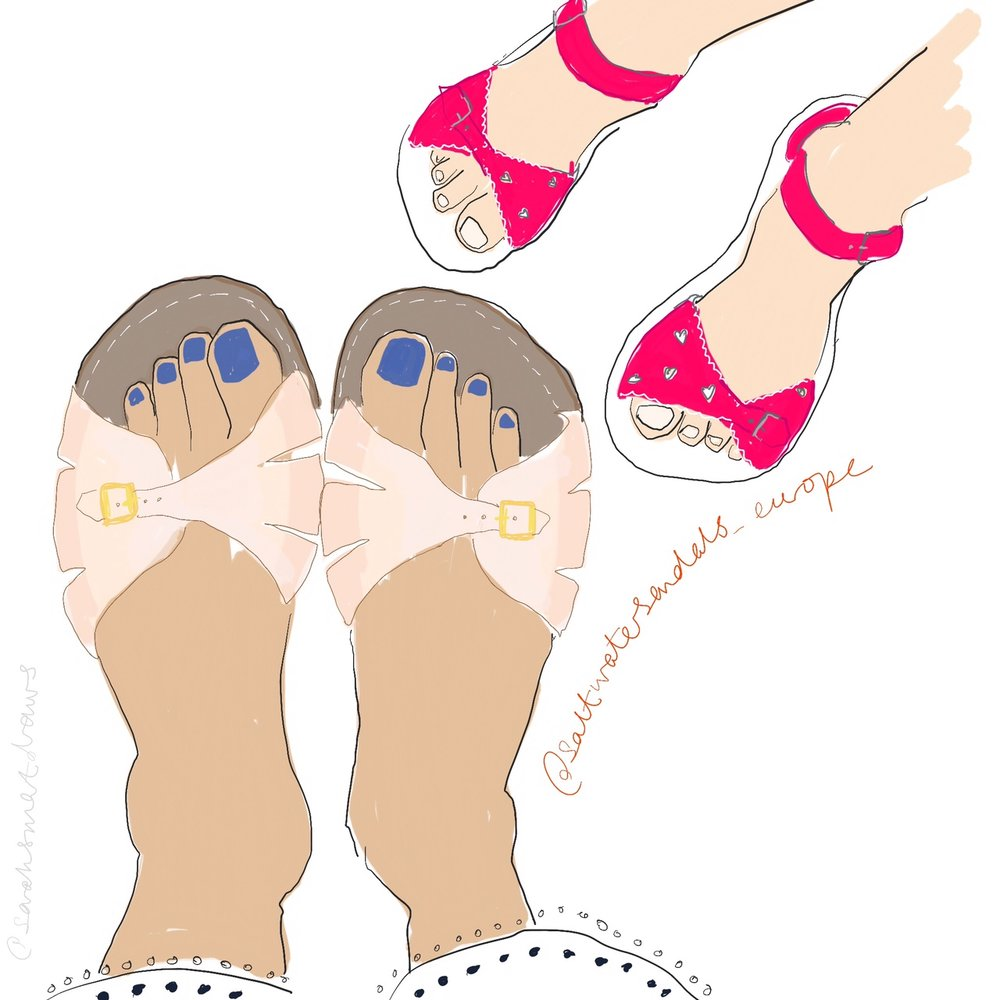 saltwater sandals illustration