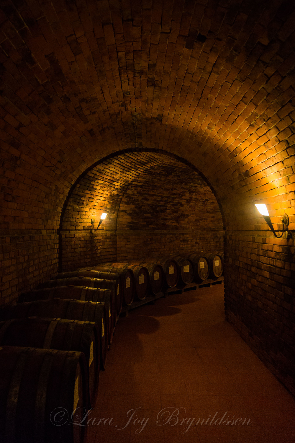 We toured the wine production facilities of Castello Monterinaldi in Chianti.