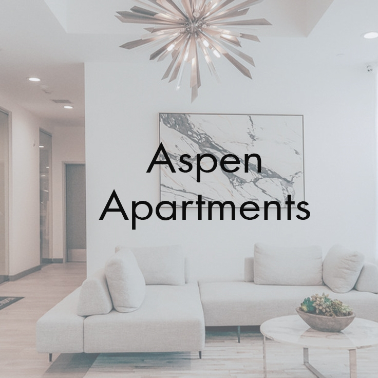 Aspen Apartments   Korea Town, Los Angeles, CA   Scope :Interior renovations, design, and styling.  Spaces Include:  Lobby, Recreation Room lounge & Kitchen, & Gym.