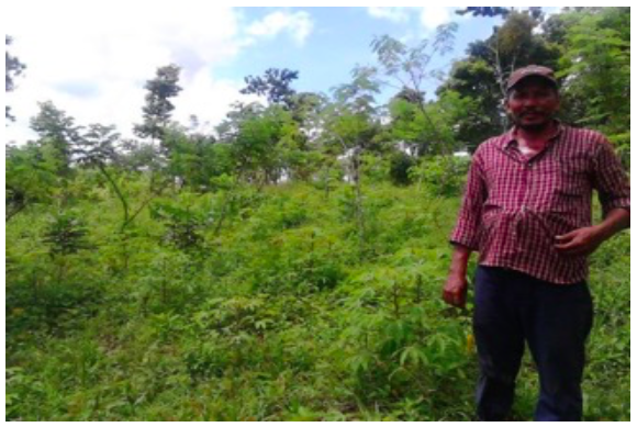 One of the residents of Tierra Amarilla stands proudly at the base of a reforested hill.