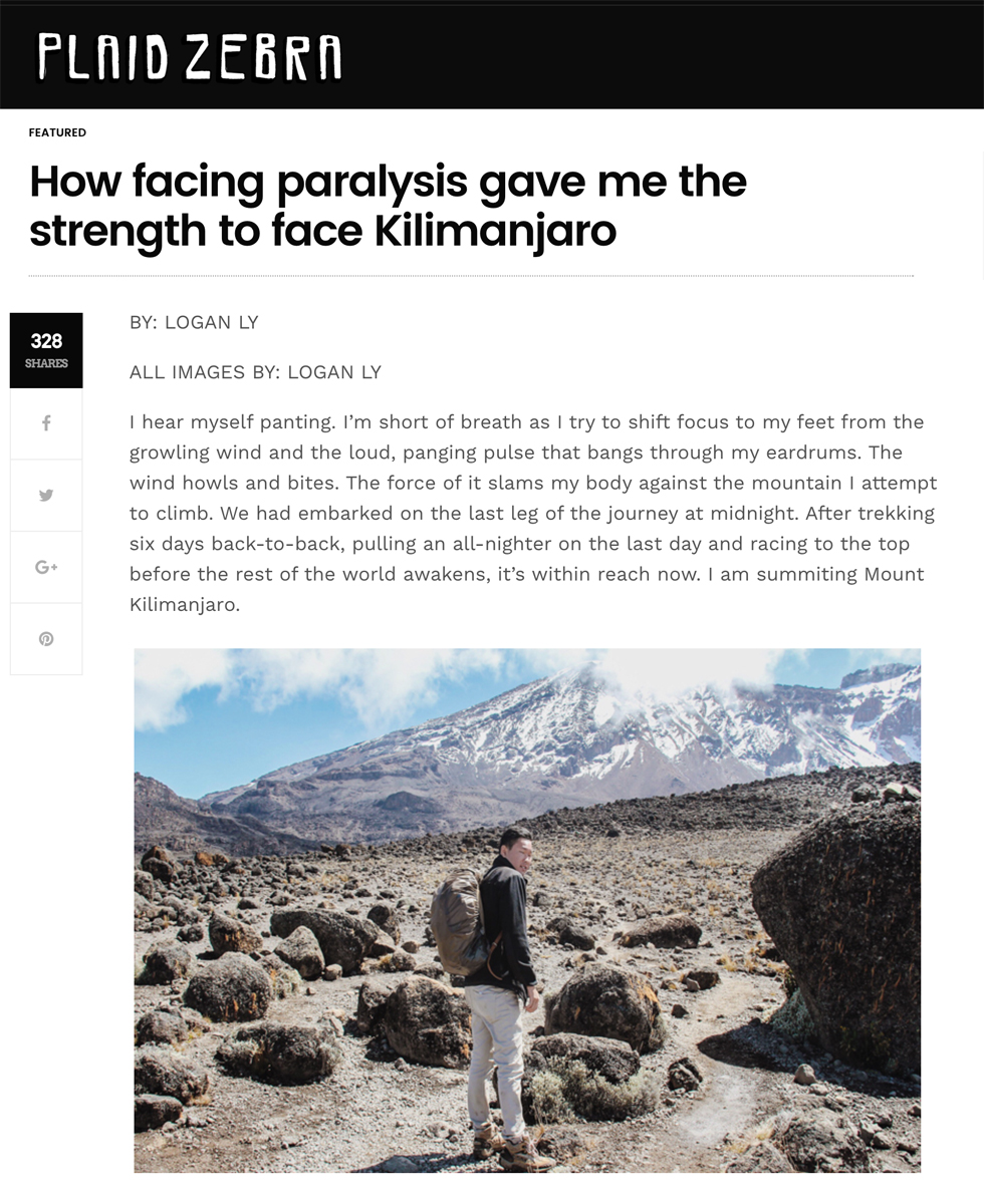 Plaid Zebra  - How Facing Paralysis Gave Me the Strength to Face Kilimanjaro