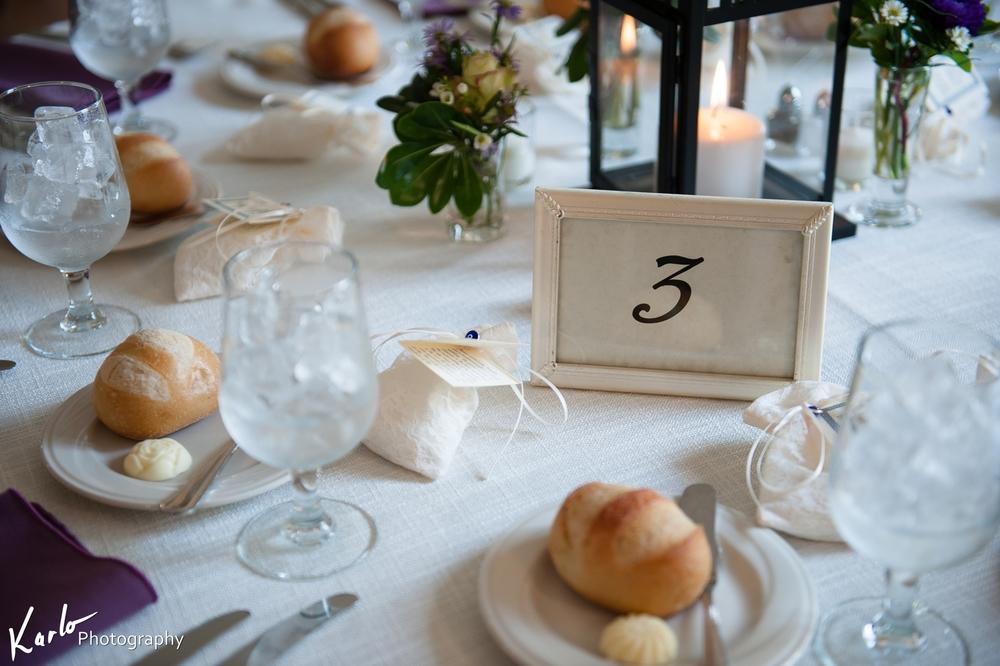 karlo wedding photographer malvern hilltop house devon pa pennsylvania 0019.JPG