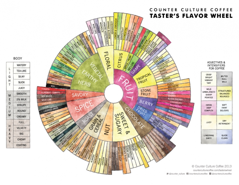 Counter Culture Coffee Taster's Flavor Wheel, from counterculturecoffee.com.