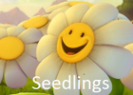 seedlings.png