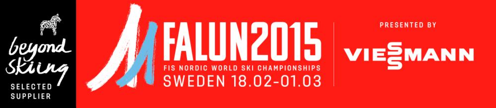Adinq är selected supplier och partner till Falun 2015!