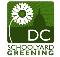 dc_schoolyard_greening_small-copy.jpg