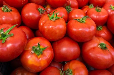 sauce-tomatoes-1.jpg