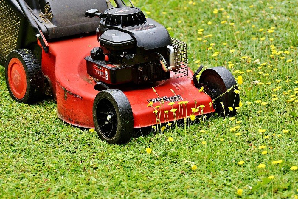 lawn-mower-2408925_1920.jpg
