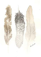 feathers-number-1-small