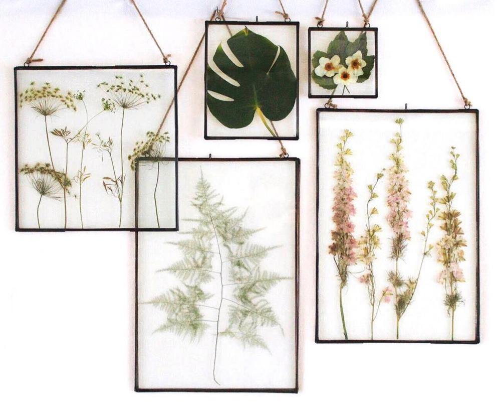 Planted Studio