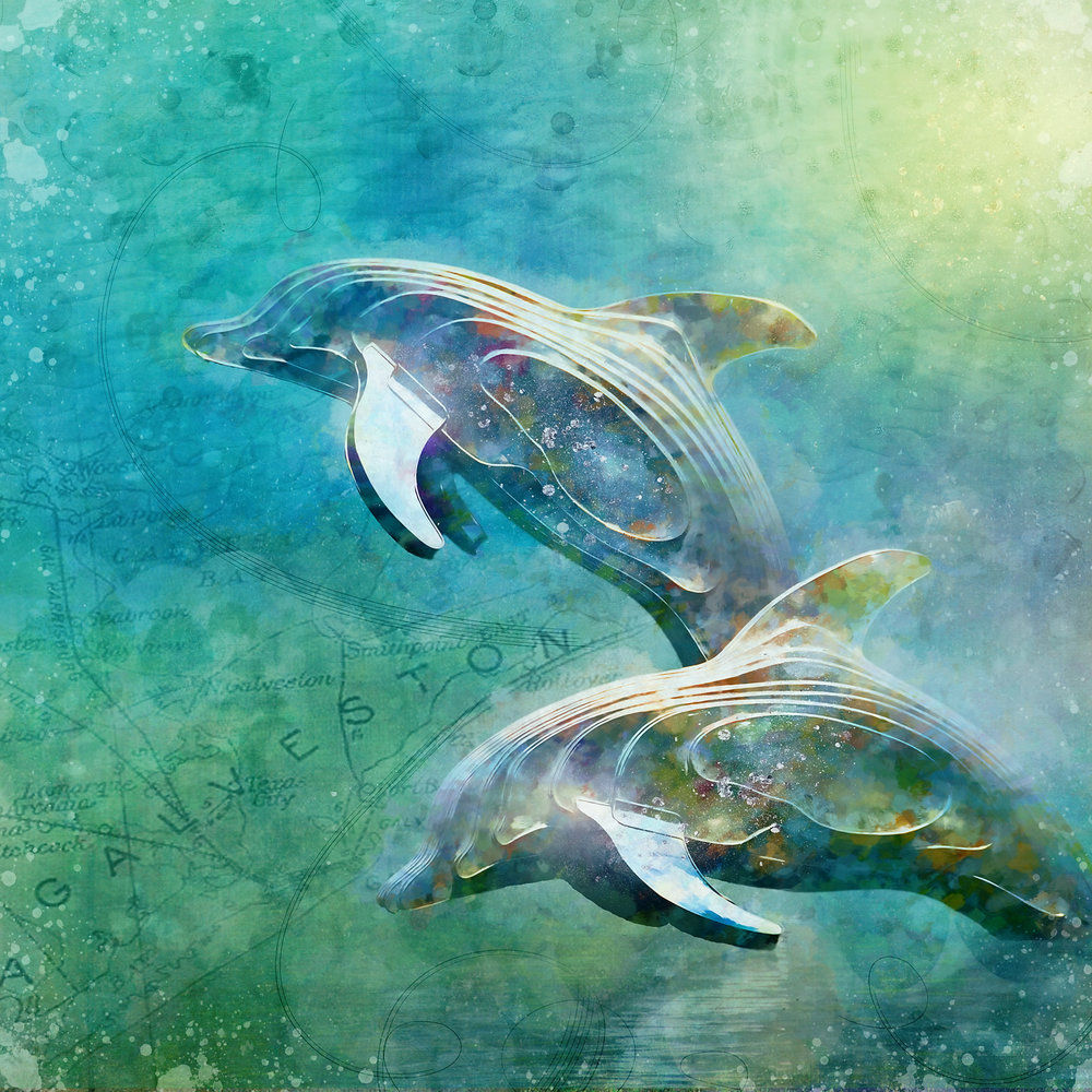 Carefree Dolphins (small).jpg