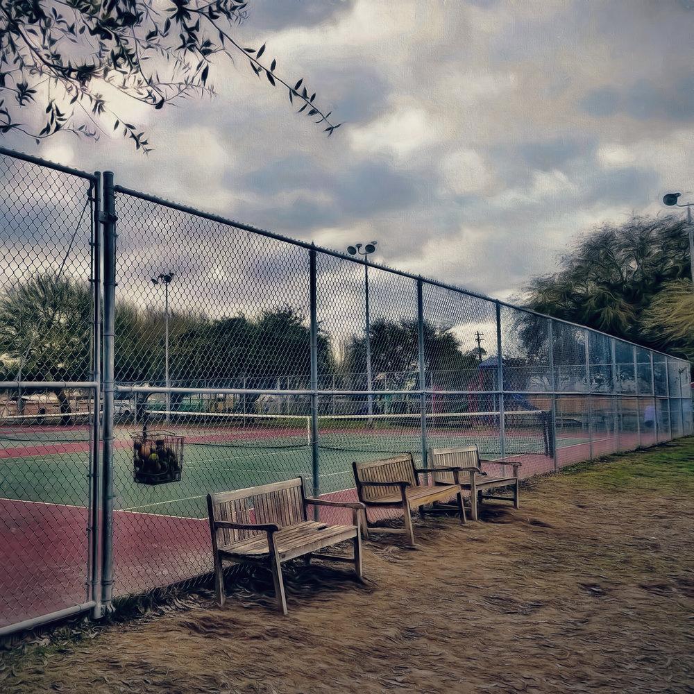 Dog Park-13.jpg