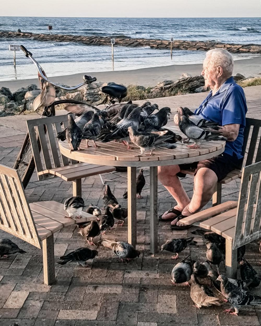 Feeding the Pigeons-101.jpg