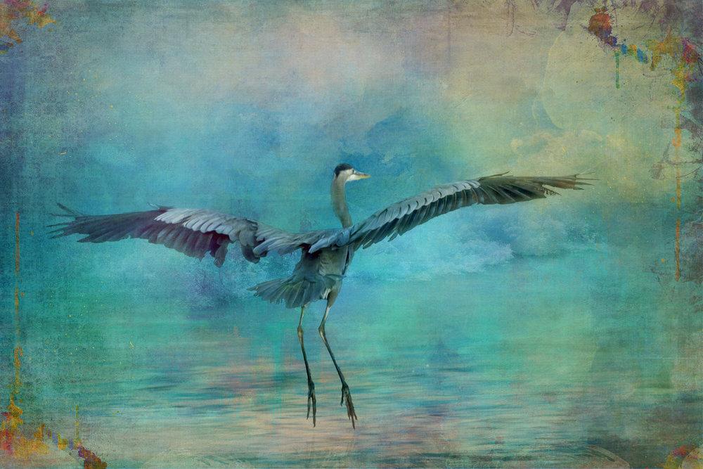 Crane 2-107.jpg