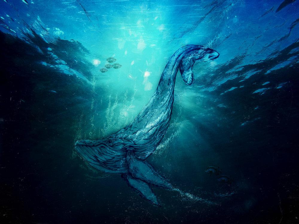 Whale-129.jpg