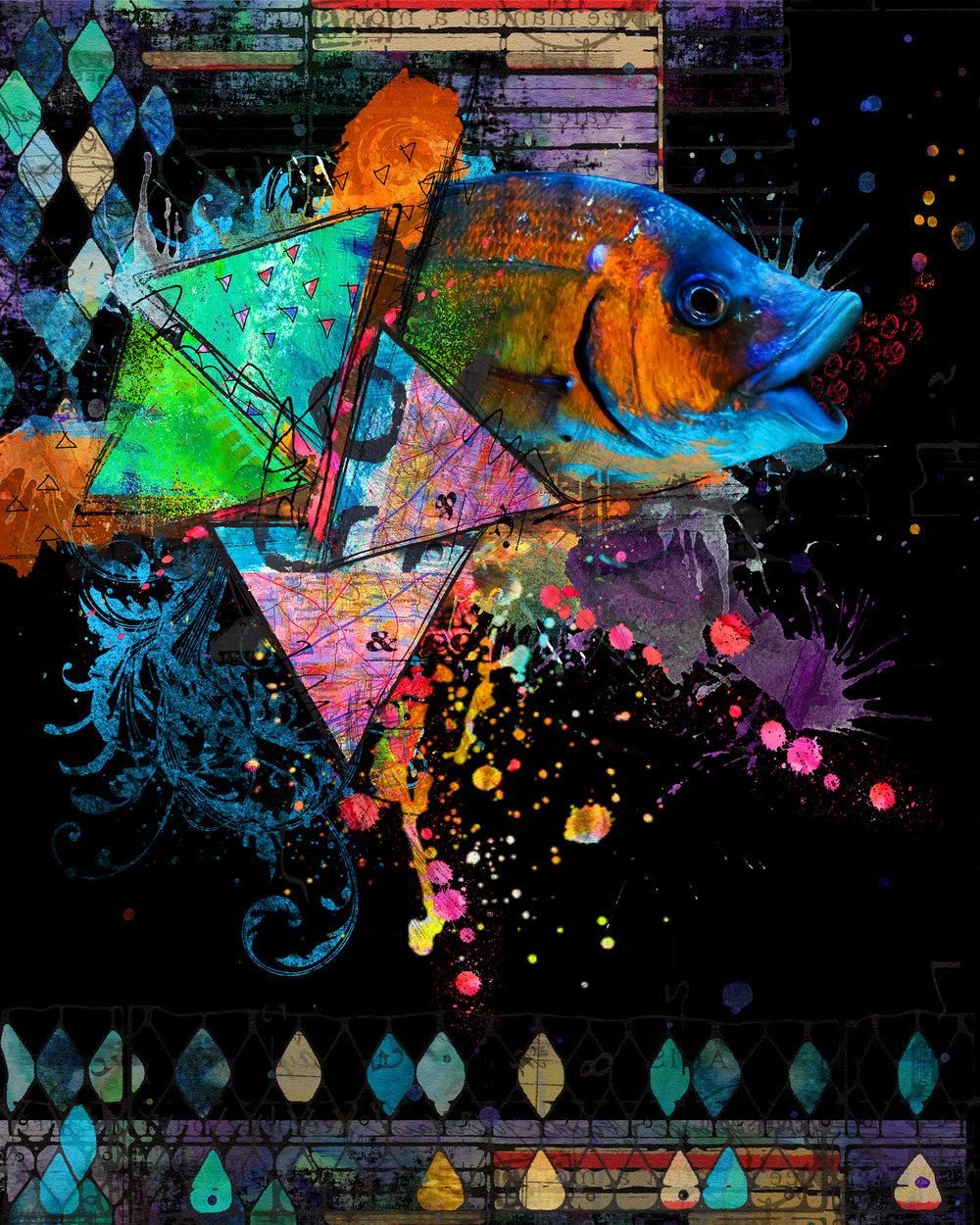 Psychedelic Fish (Black)-175.jpg