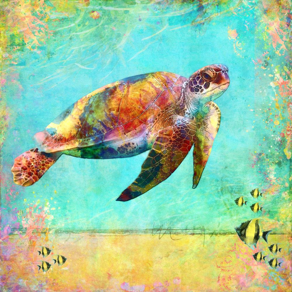 Sea Turtle 3-187.jpg