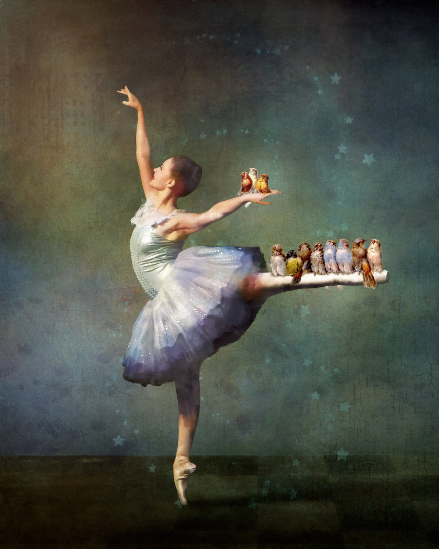 Ballerina and Birds (small).jpg