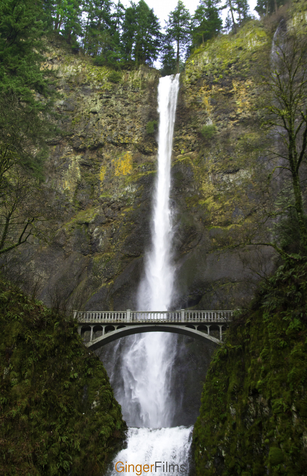 Multnomah Falls Final.jpg