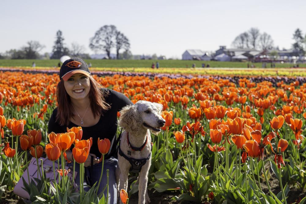 Tulip Farm - Macy1.jpg