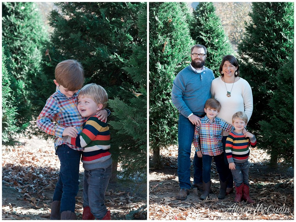 ps bluebird christmas tree farm is a lovely place to start a new family tradition - Bluebird Christmas Tree Farm