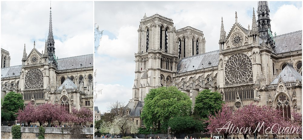 France_Paris_Marseille_Cassis_alisonmcquainphtography2018-04-27_0026.jpg