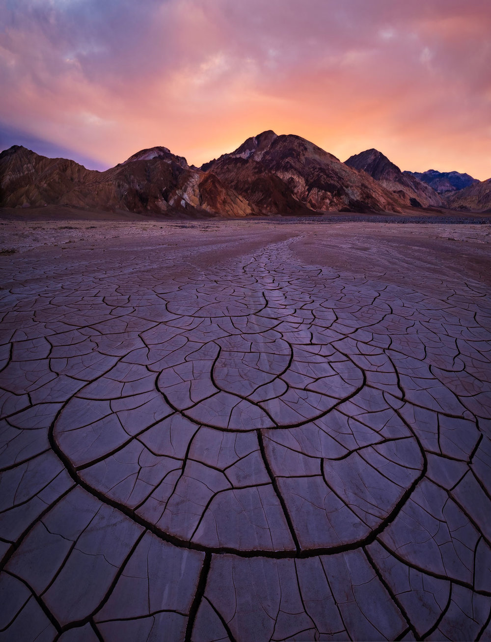 Mud cracks express the cycle of life in the desert after a flood in Death Valley National Park