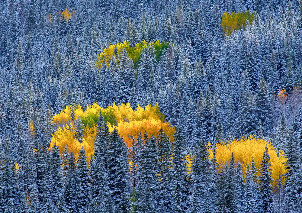 Colorado-29.jpg