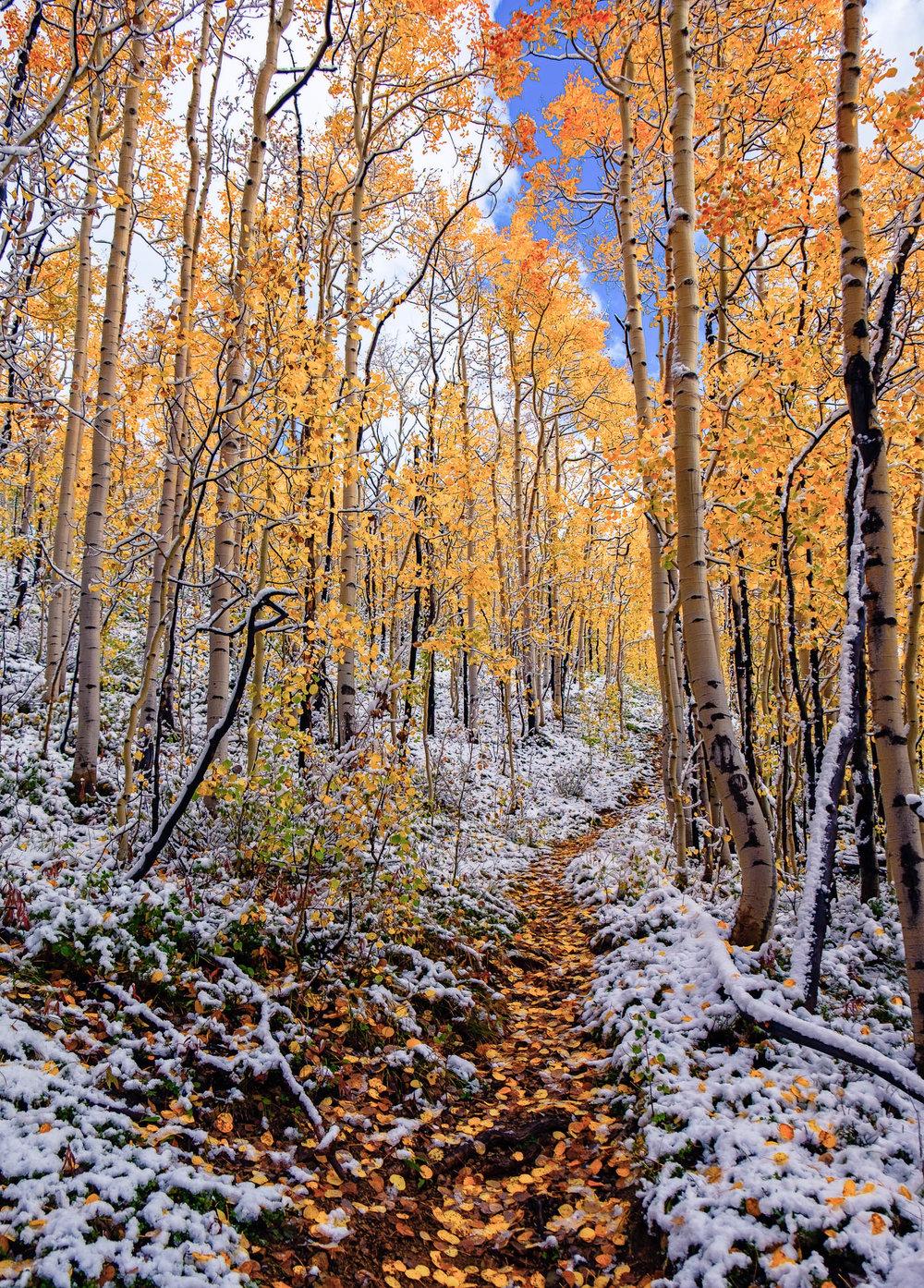 Colorado-30.jpg