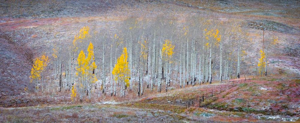 Colorado-53.jpg