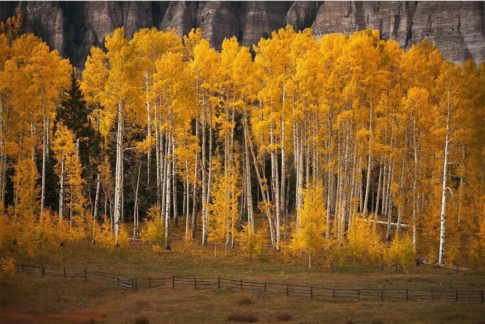 Colorado-56.jpg