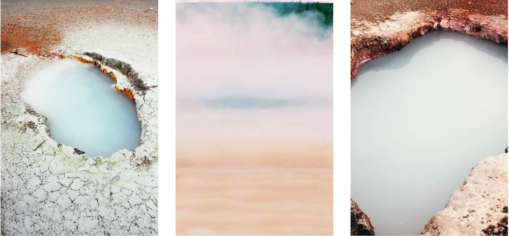 collage2.1.jpg