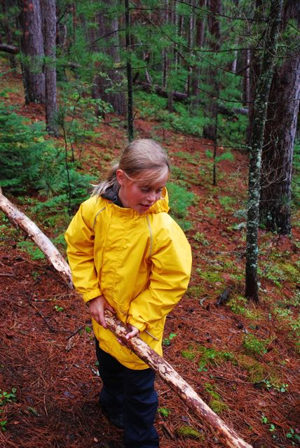 Anna is an experienced wood collector.