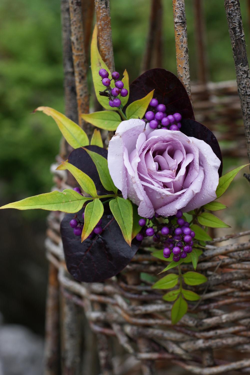 garden and floristry 1 061.JPG