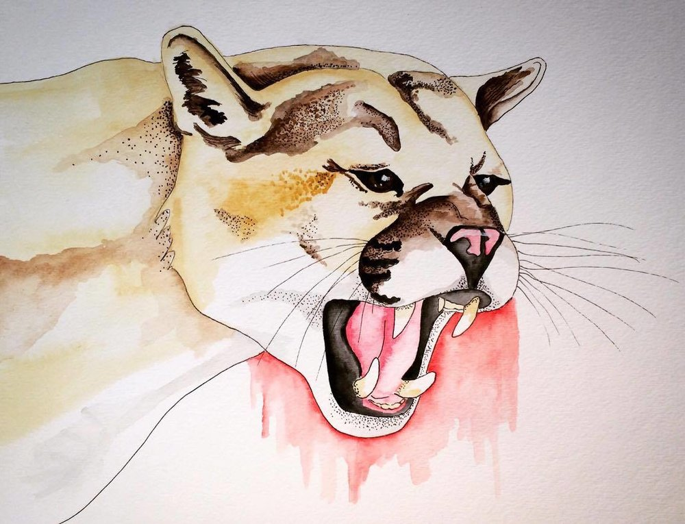 mt lion.jpg
