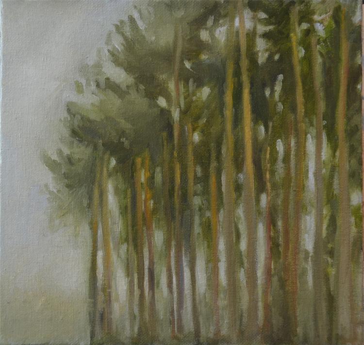 """Pines"""