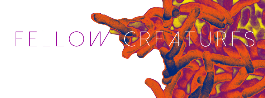 Fellow Creatures  // Web Banner   Art Direction Collaboration // Digital Design and Layout