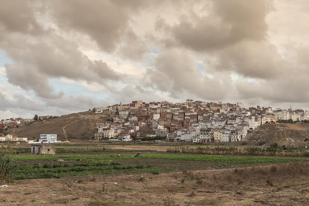 Tangier-September-2014-1-30.jpg
