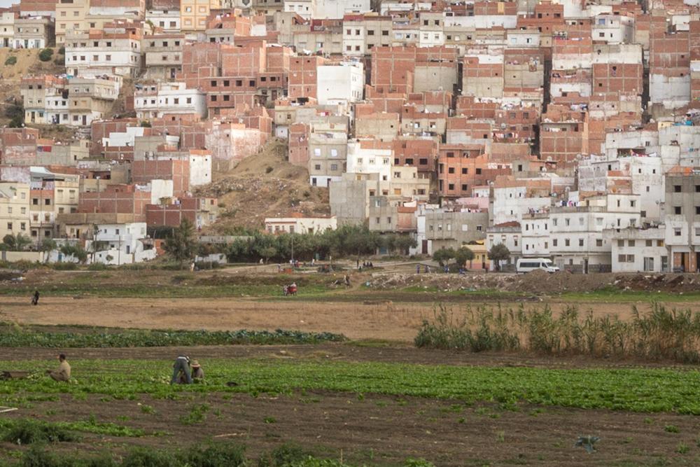 Tangier-September-2014-1-78.jpg