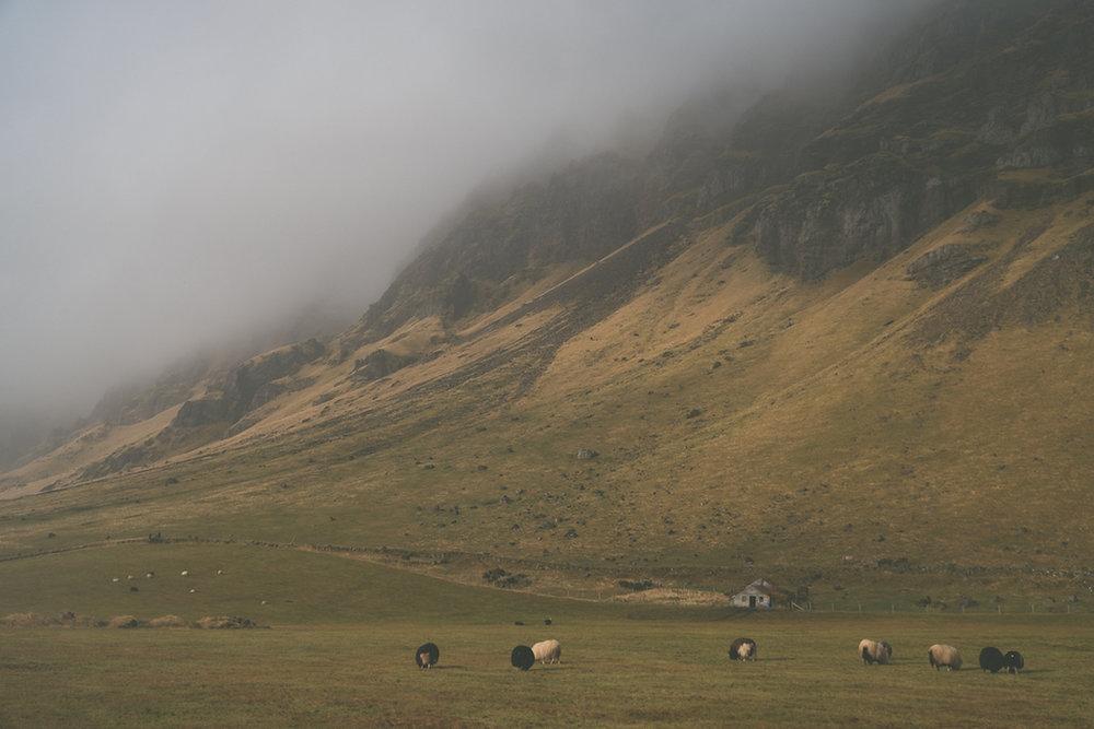 Webb_Iceland18_4045.jpg