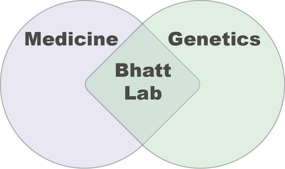 bhatt lab.png
